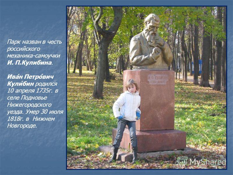 Парк назван в честь российского механика-самоучки И. П.Кулибина. Ива́н Петро́вич Кули́бин родился 10 апреля 1735г. в селе Подновье Нижегородского уезда. Умер 30 июля 1818г. в Нижнем Новгороде.