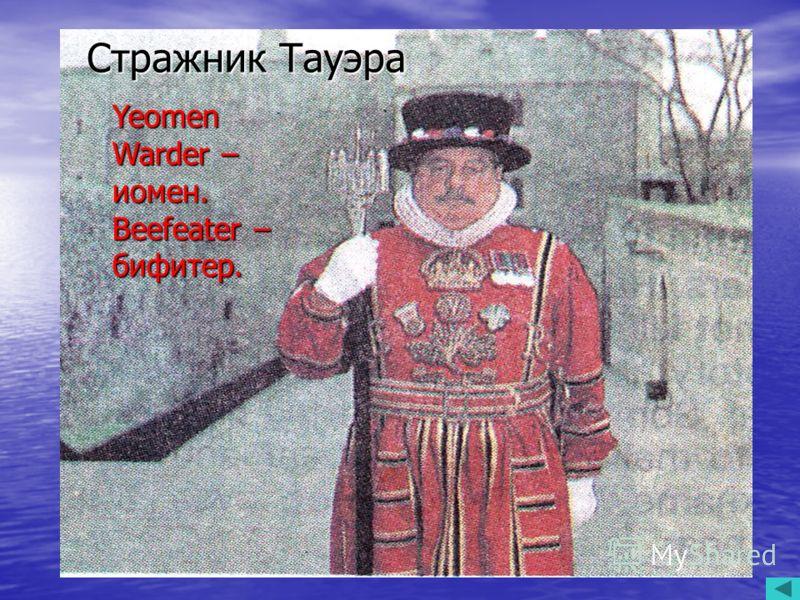 Стражник Тауэра Yeomen Warder – иомен. Yeomen Warder – иомен. Beefeater – бифитер. Beefeater – бифитер. Yeomen Warder – иомен. Beefeater – бифитер. Стражник Тауэра