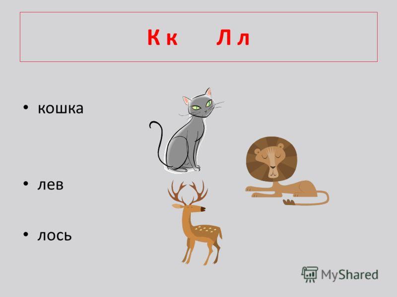 К к Л л кошка лев лось