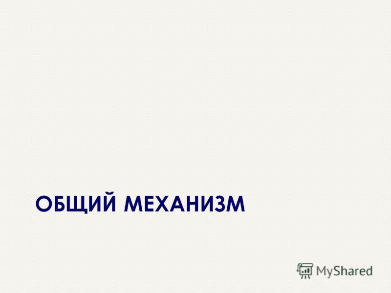 ОБЩИЙ МЕХАНИЗМ