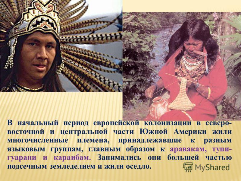 В начальный период европейской колонизации в северо- восточной и центральной части Южной Америки жили многочисленные племена, принадлежавшие к разным языковым группам, главным образом к аравакам, тупи- гуарани и караибам. Занимались они большей часть