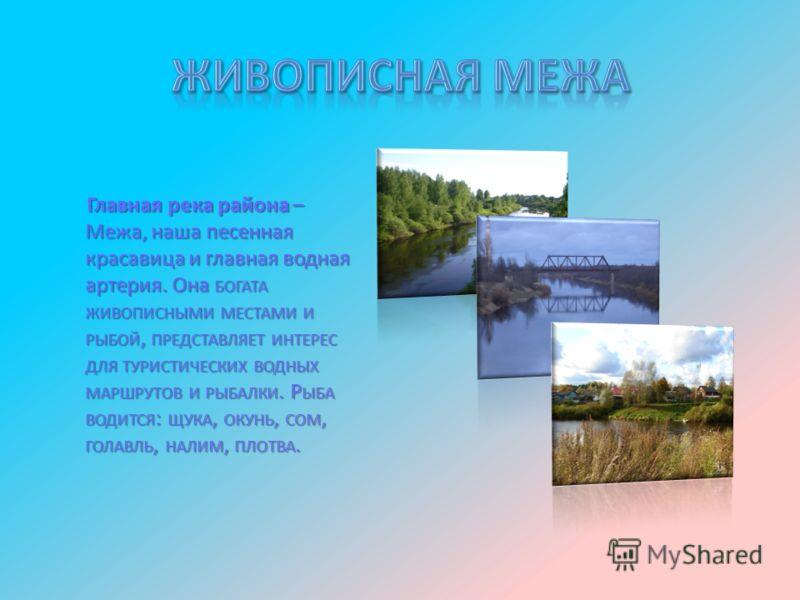 Главная река района – Межа, наша песенная красавица и главная водная артерия. Она БОГАТА ЖИВОПИСНЫМИ МЕСТАМИ И РЫБОЙ, ПРЕДСТАВЛЯЕТ ИНТЕРЕС ДЛЯ ТУРИСТИЧЕСКИХ ВОДНЫХ МАРШРУТОВ И РЫБАЛКИ. Р ЫБА ВОДИТСЯ : ЩУКА, ОКУНЬ, СОМ, ГОЛАВЛЬ, НАЛИМ, ПЛОТВА.