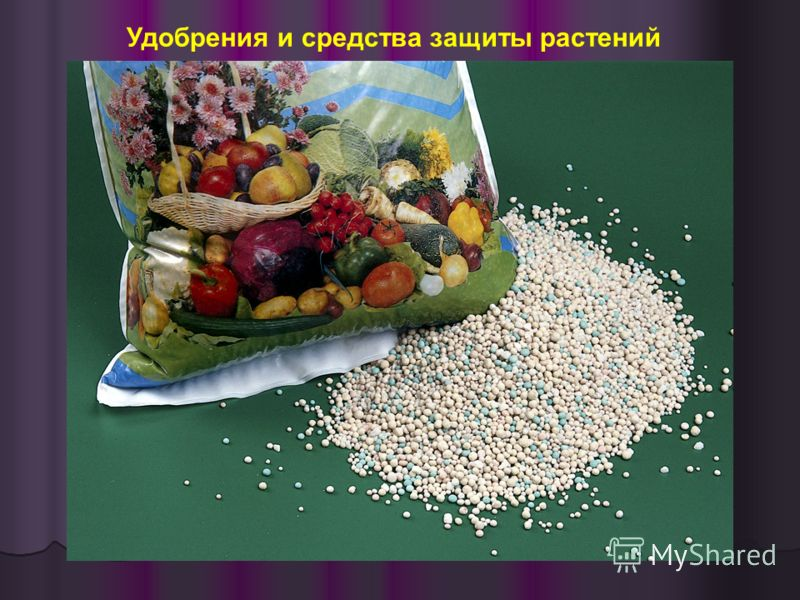 Удобрения и средства защиты растений