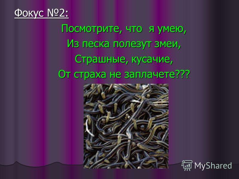 Фокус 2: Посмотрите, что я умею, Из песка полезут змеи, Страшные, кусачие, От страха не заплачете???