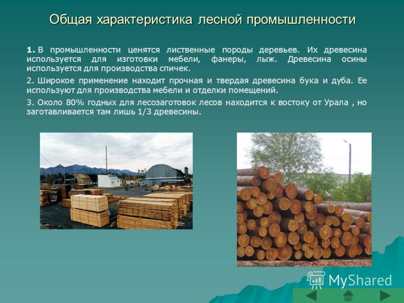 Общая характеристика лесной промышленности 1. В промышленности ценятся лиственные породы деревьев. Их древесина используется для изготовки мебели, фанеры, лыж. Древесина осины используется для производства спичек. 2. Широкое применение находит прочна