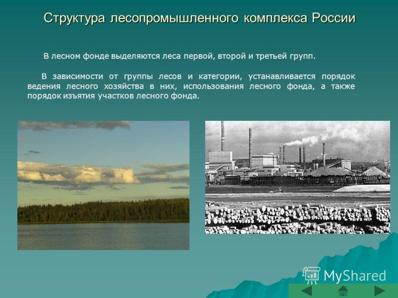 Структура лесопромышленного комплекса России В лесном фонде выделяются леса первой, второй и третьей групп. В зависимости от группы лесов и категории, устанавливается порядок ведения лесного хозяйства в них, использования лесного фонда, а также поряд