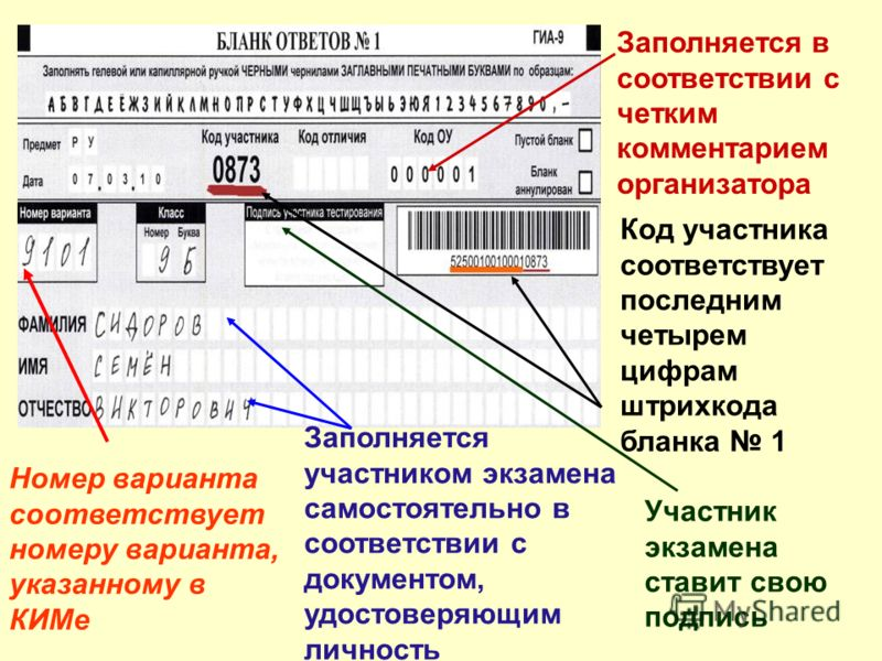 Участник экзамена ставит свою подпись Заполняется участником экзамена самостоятельно в соответствии с документом, удостоверяющим личность Заполняется в соответствии с четким комментарием организатора Номер варианта соответствует номеру варианта, указ