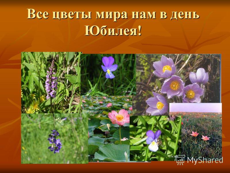 Все цветы мира нам в день Юбилея!