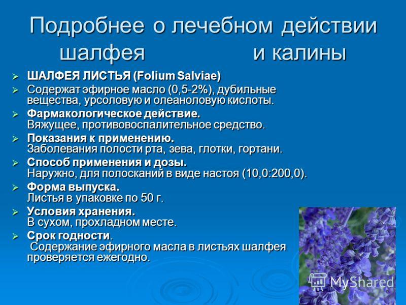Подробнее о лечебном действии шалфея и калины ШАЛФЕЯ ЛИСТЬЯ (Folium Salviae) ШАЛФЕЯ ЛИСТЬЯ (Folium Salviae) Содержат эфирное масло (0,5-2%), дубильные вещества, урсоловую и олеаноловую кислоты. Содержат эфирное масло (0,5-2%), дубильные вещества, урс