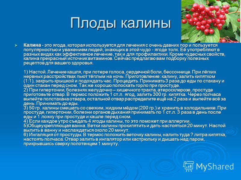 Плоды калины Калина - это ягода, которая используется для лечения с очень давних пор и пользуется популярностью и уважением людей, знающих в этой чудо - ягоде толк. Её употребляют в разных видах как эффективное лечение, так и для профилактики. Кроме