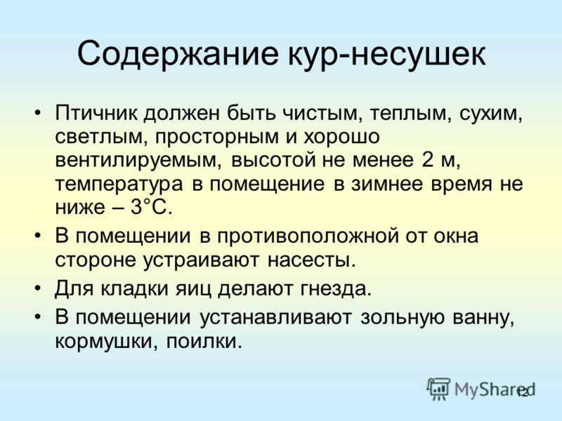 Презентация Породы Кур