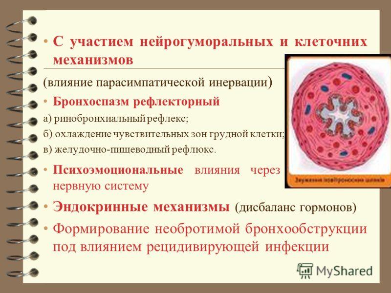 С участием нейрогуморальных и клеточних механизмов (влияние парасимпатической инервации ) Бронхоспазм рефлекторный а) ринобронхиальный рефлекс; б) охлаждение чувствительных зон грудной клетки; в) желудочно-пищеводный рефлюкс. Психоэмоциональные влиян
