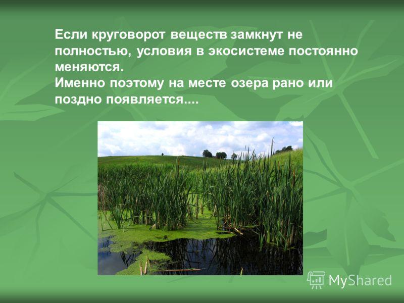 Если круговорот веществ замкнут не полностью, условия в экосистеме постоянно меняются. Именно поэтому на месте озера рано или поздно появляется....