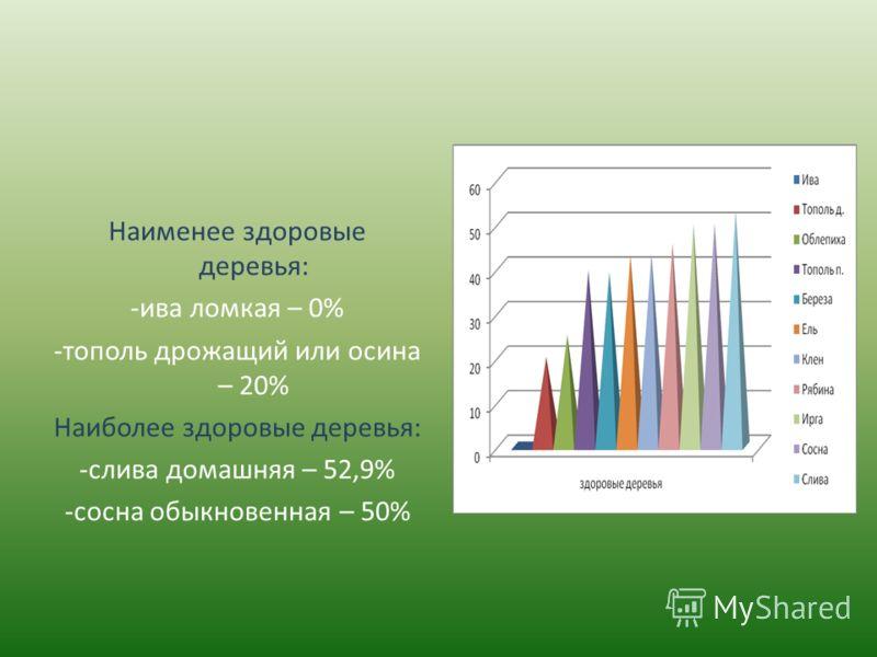 Наименее здоровые деревья: -ива ломкая – 0% -тополь дрожащий или осина – 20% Наиболее здоровые деревья: -слива домашняя – 52,9% -сосна обыкновенная – 50%