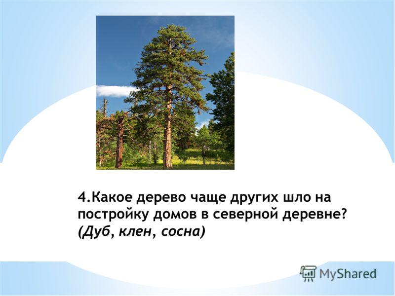 4.Какое дерево чаще других шло на постройку домов в северной деревне? (Дуб, клен, сосна)