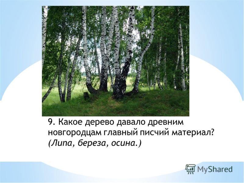 9. Какое дерево давало древним новгородцам главный писчий материал? (Липа, береза, осина.)