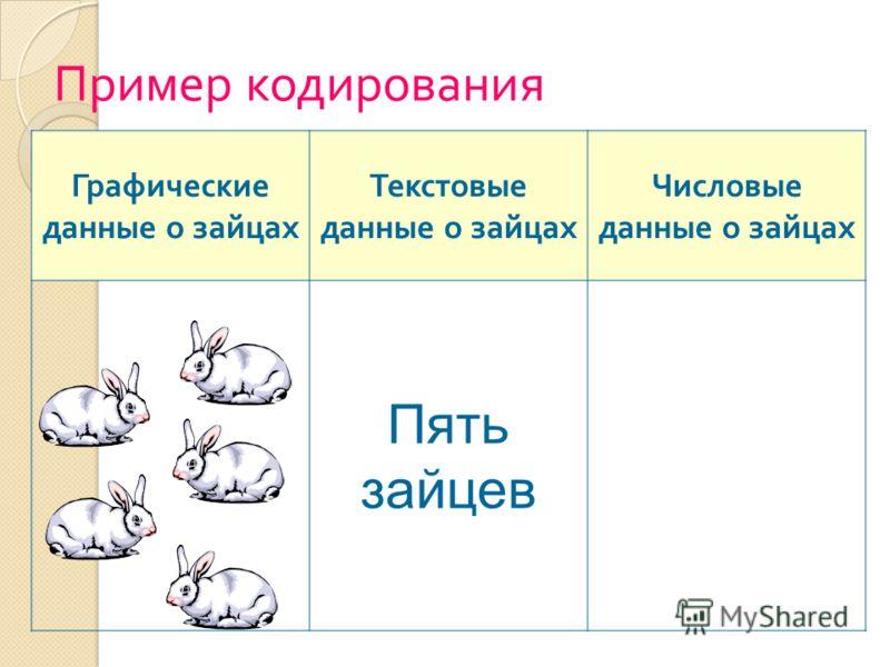 Пример кодирования Графические данные о зайцах Текстовые данные о зайцах Числовые данные о зайцах Пять зайцев
