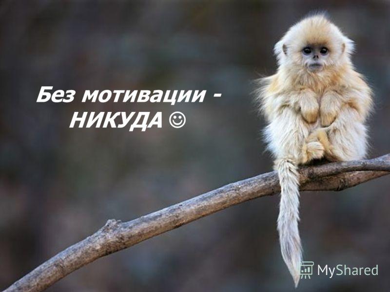 Без мотивации - НИКУДА