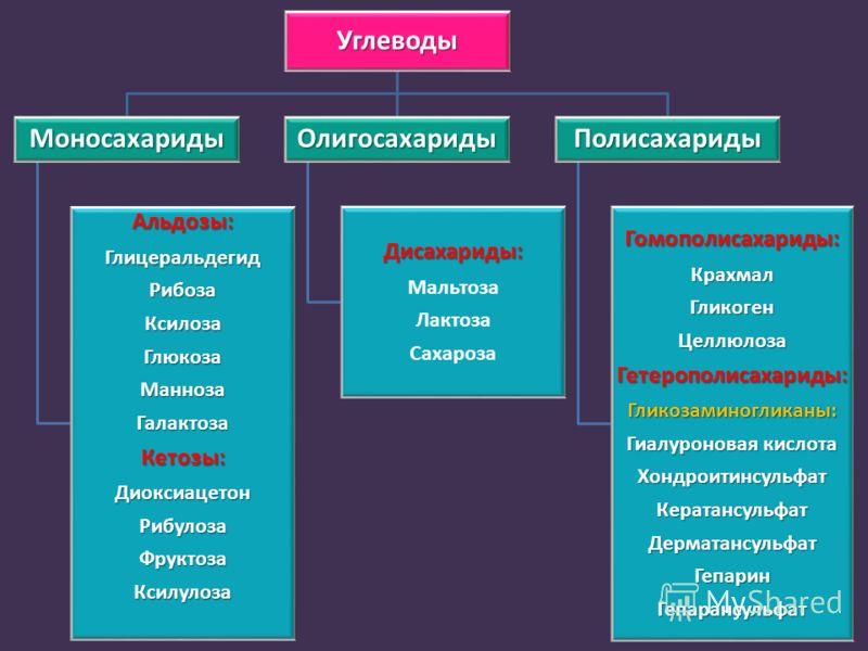 Углеводы Моносахариды Альдозы:ГлицеральдегидРибозаКсилозаГлюкозаМаннозаГалактозаКетозы:ДиоксиацетонРибулозаФруктозаКсилулоза Олигосахариды Дисахариды: Мальтоза Лактоза Сахароза Полисахариды Гомополисахариды:КрахмалГликогенЦеллюлозаГетерополисахариды: