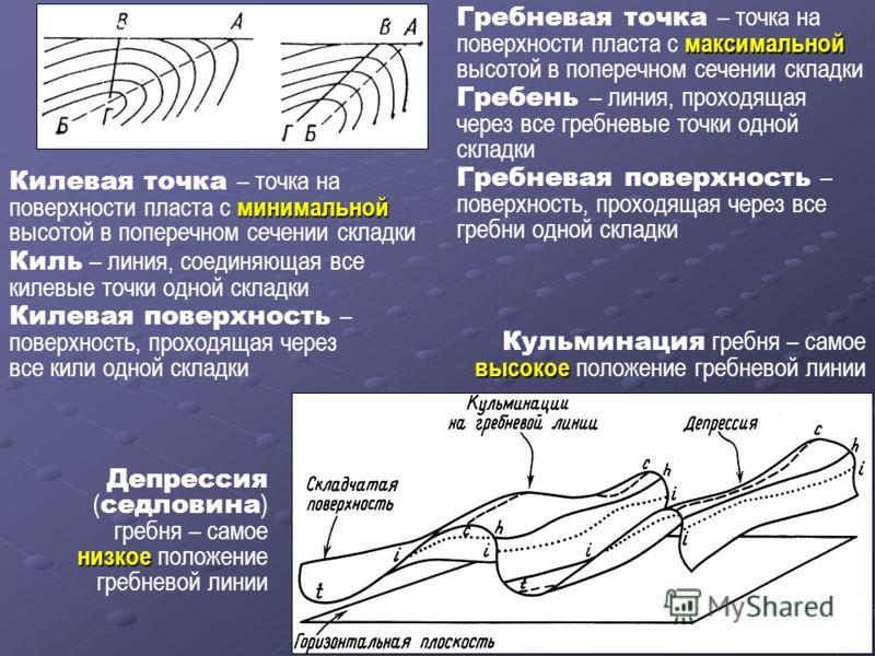 максимальной Гребневая точка – точка на поверхности пласта с максимальной высотой в поперечном сечении складки Гребень – линия, проходящая через все гребневые точки одной складки Гребневая поверхность – поверхность, проходящая через все гребни одной