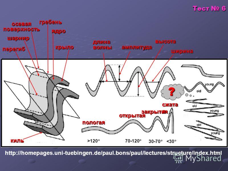 Тест 6 http://homepages.uni-tuebingen.de/paul.bons/paul/lectures/structure/index.html шарнир осеваяповерхность гребень ядро крыло перегиб киль пологая открытая закрытая сжата я ? длина волны амплитуда высота >120 70-120 30-70