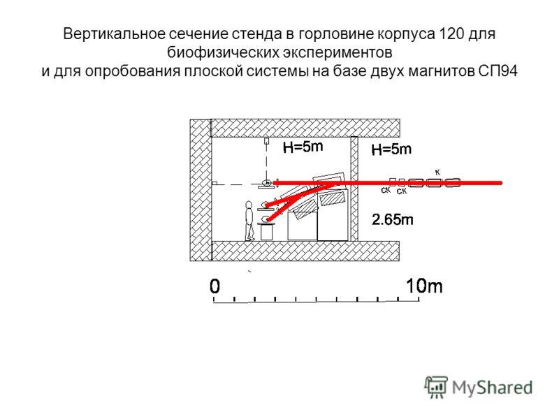 Вертикальное сечение стенда в горловине корпуса 120 для биофизических экспериментов и для опробования плоской системы на базе двух магнитов СП94