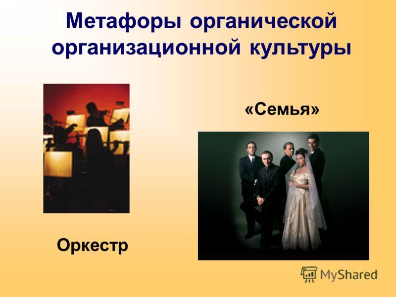 Метафоры органической организационной культуры Оркестр «Семья»