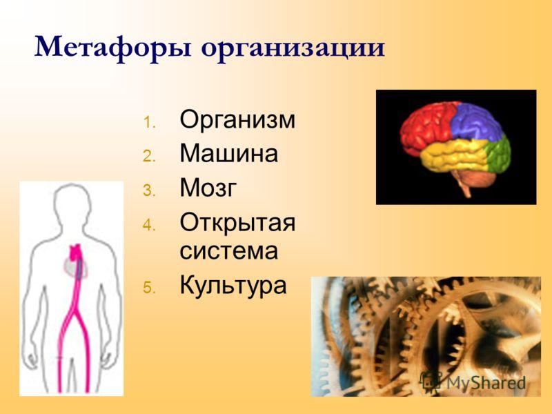 Метафоры организации 1. Организм 2. Машина 3. Мозг 4. Открытая система 5. Культура