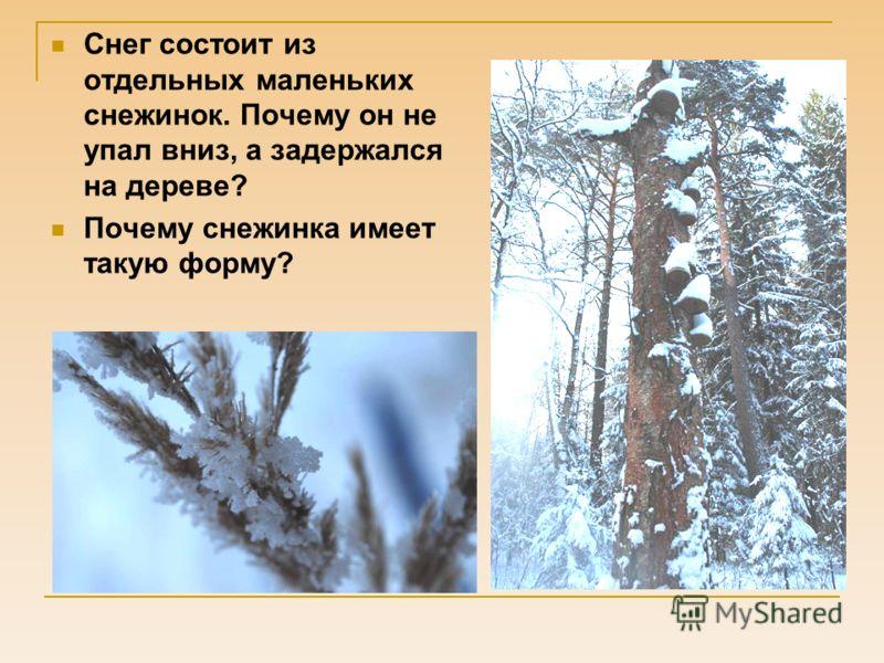Снег состоит из отдельных маленьких снежинок. Почему он не упал вниз, а задержался на дереве? Почему снежинка имеет такую форму?