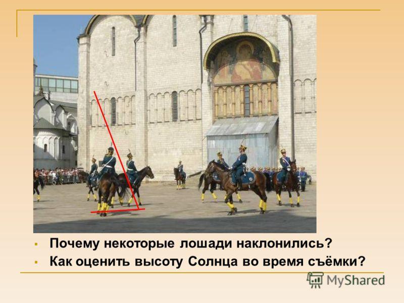 Почему некоторые лошади наклонились? Как оценить высоту Солнца во время съёмки?