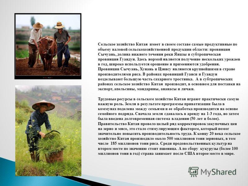 Сельское хозяйство Китая имеет в своем составе самые продуктивные по объему валовой сельскохозяйственной продукции области: провинция Сычуань, долина нижнего течения реки Янцзы и субтропическая провинция Гуандун. Здесь нормой является получение неско