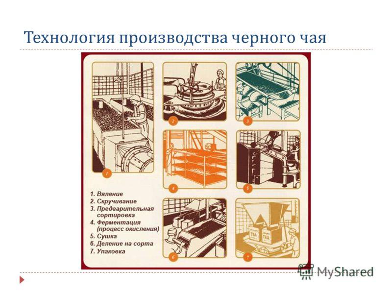 Технология производства черного чая