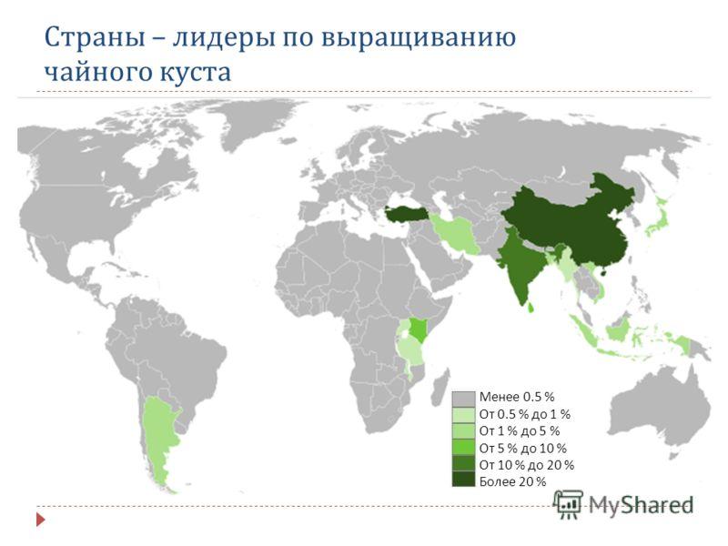 Страны – лидеры по выращиванию чайного куста Менее 0.5 % От 0.5 % до 1 % От 1 % до 5 % От 5 % до 10 % От 10 % до 20 % Более 20 %