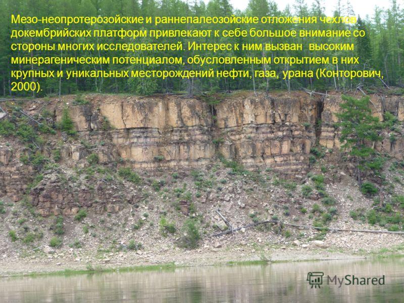 Мезо-неопротерозойские и раннепалеозойские отложения чехлов докембрийских платформ привлекают к себе большое внимание со стороны многих исследователей. Интерес к ним вызван высоким минерагеническим потенциалом, обусловленным открытием в них крупных и