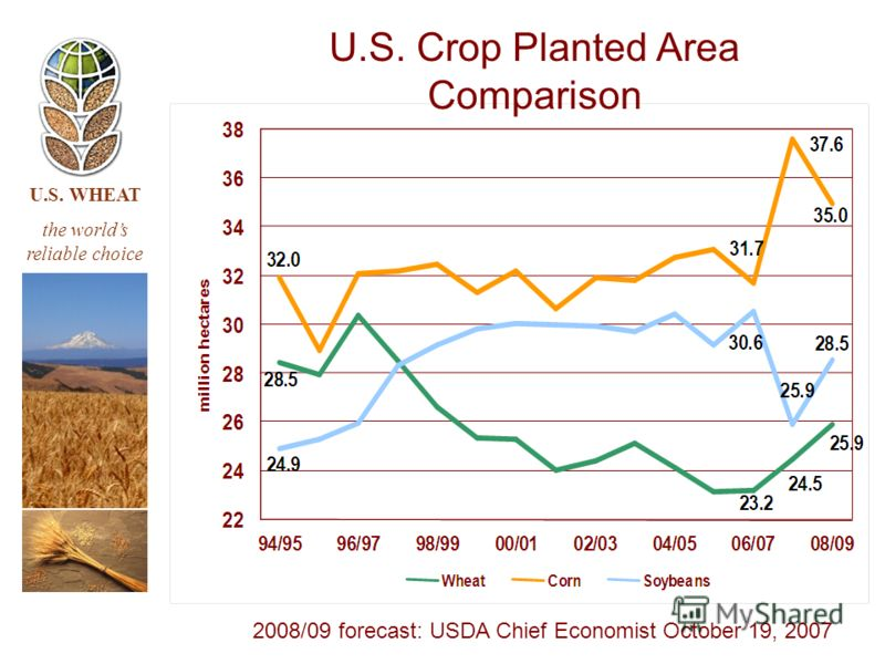 U.S. WHEAT the worlds reliable choice U.S. Crop Planted Area Comparison 2008/09 forecast: USDA Chief Economist October 19, 2007
