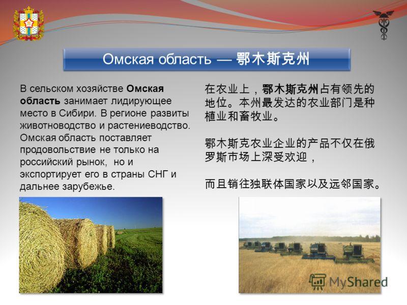 В сельском хозяйстве Омская область занимает лидирующее место в Сибири. В регионе развиты животноводство и растениеводство. Омская область поставляет продовольствие не только на российский рынок, но и экспортирует его в страны СНГ и дальнее зарубежье