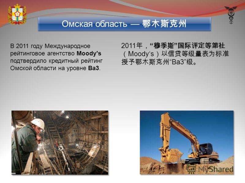 В 2011 году Международное рейтинговое агентство Moody's подтвердило кредитный рейтинг Омской области на уровне Ва3. 2011 MoodysBа3 Омская область