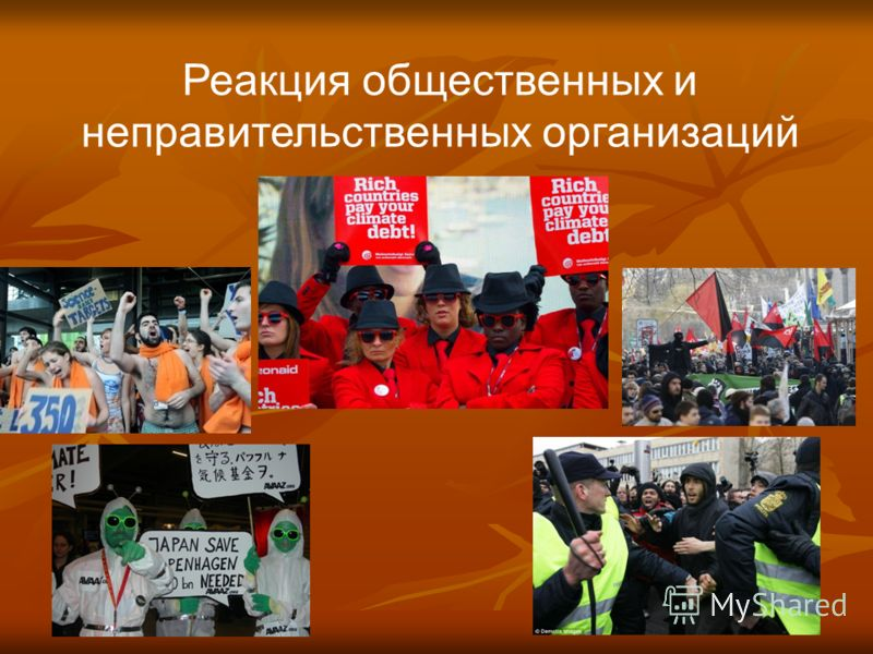 5 Реакция общественных и неправительственных организаций