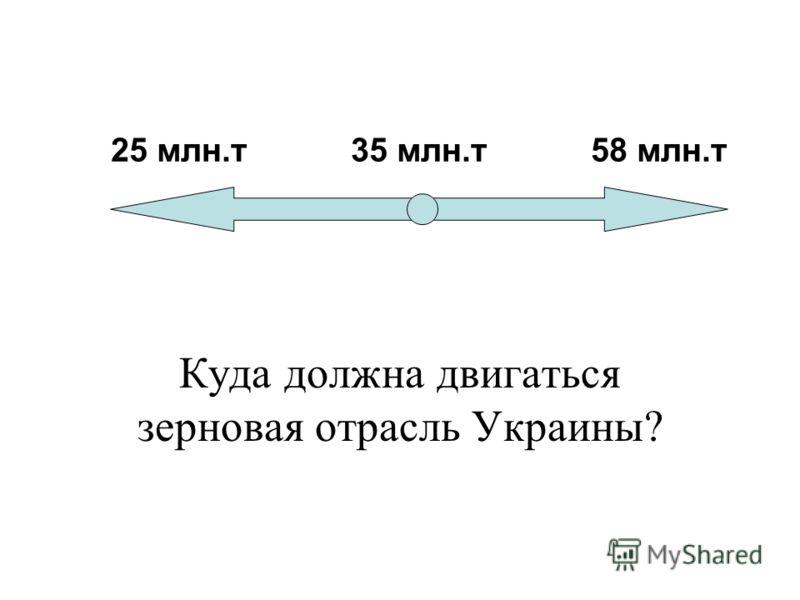 25 млн.т 35 млн.т 58 млн.т Куда должна двигаться зерновая отрасль Украины?