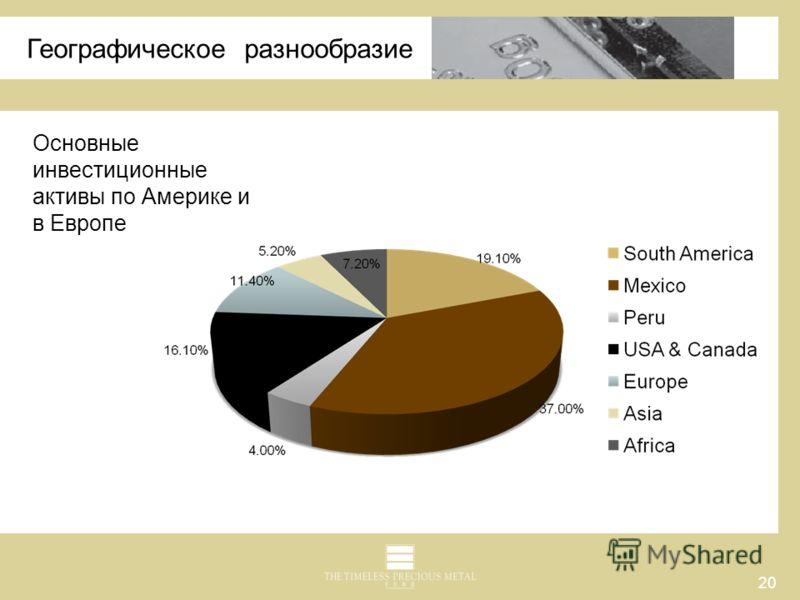 20 Географическое разнообразие Основные инвестиционные активы по Америке и в Европе