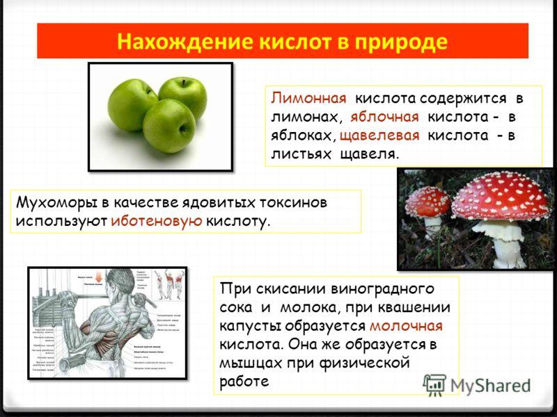 Нахождение кислот в природе Лимонная кислота содержится в лимонах, яблочная кислота - в яблоках, щавелевая кислота - в листьях щавеля. Мухоморы в качестве ядовитых токсинов используют иботеновую кислоту. При скисании виноградного сока и молока, при к