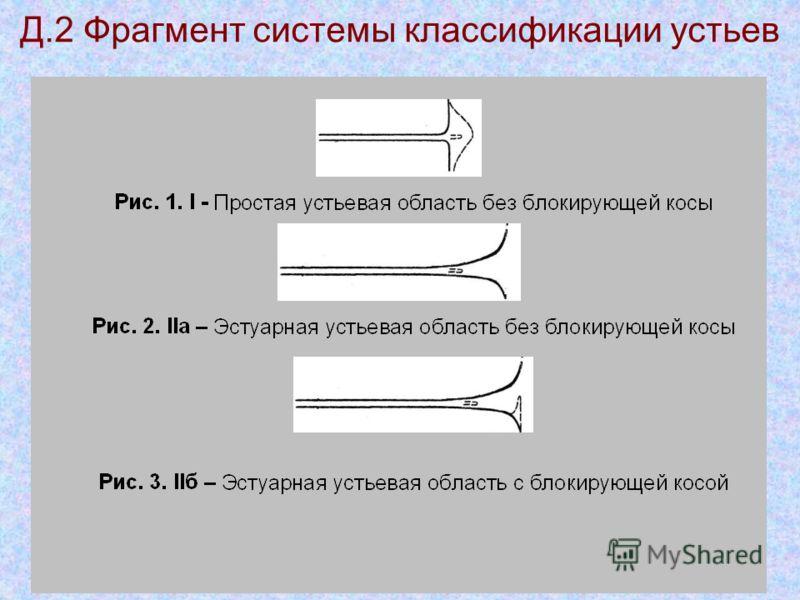 Д.2 Фрагмент системы классификации устьев