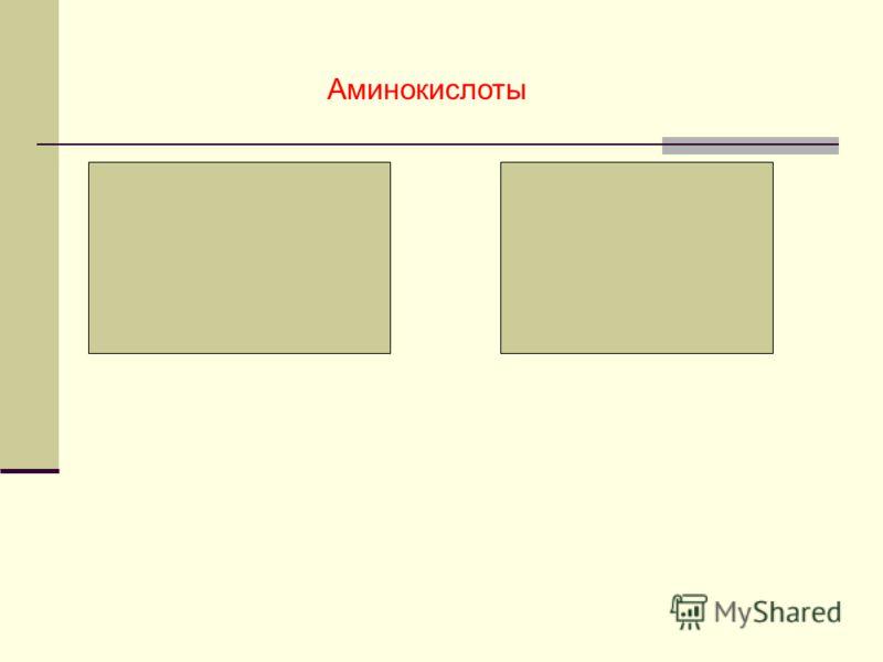 Аминокислоты Аминогруппа -NH 2 Карбоксильная Группа О -С ОН