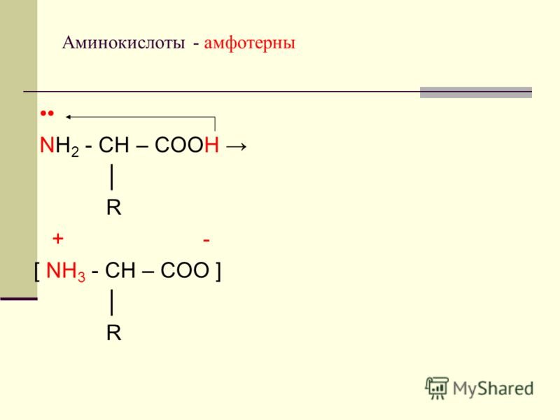 Аминокислоты - амфотерны NH 2 - СН – СООН R + - [ NH 3 - СН – СОО ] R