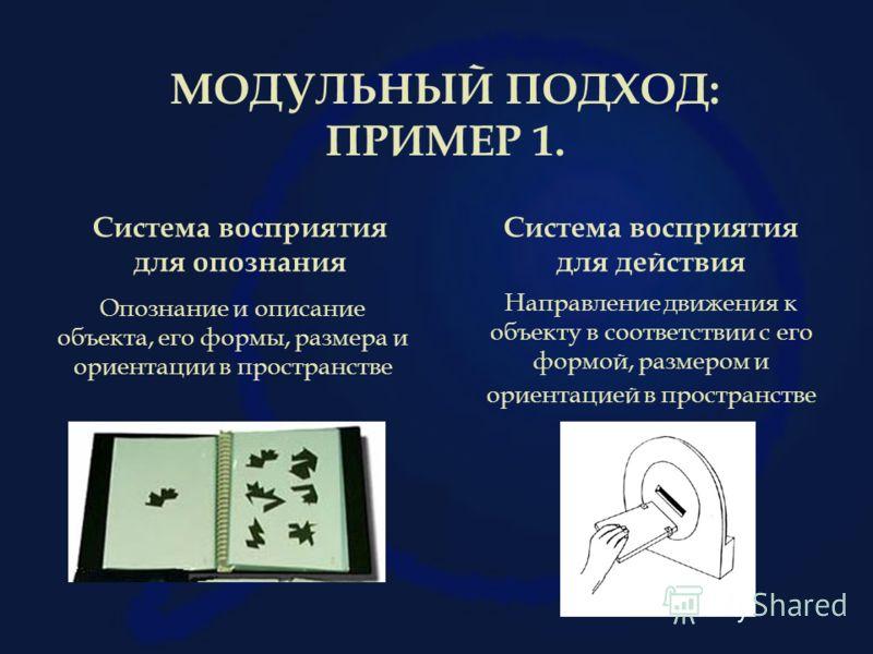 МОДУЛЬНЫЙ ПОДХОД: ПРИМЕР 1. Система восприятия для опознания Система восприятия для действия Опознание и описание объекта, его формы, размера и ориентации в пространстве Направление движения к объекту в соответствии с его формой, размером и ориентаци