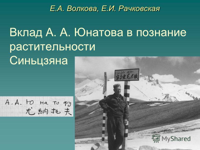 Вклад А. А. Юнатова в познание растительности Синьцзяна Е.А. Волкова, Е.И. Рачковская