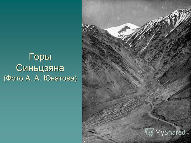 Горы Синьцзяна (Фото А. А. Юнатова)