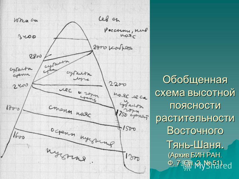 Обобщенная схема высотной поясности растительности Восточного Тянь-Шаня. (Архив БИН РАН. Ф. 7. Оп. 2. 51).
