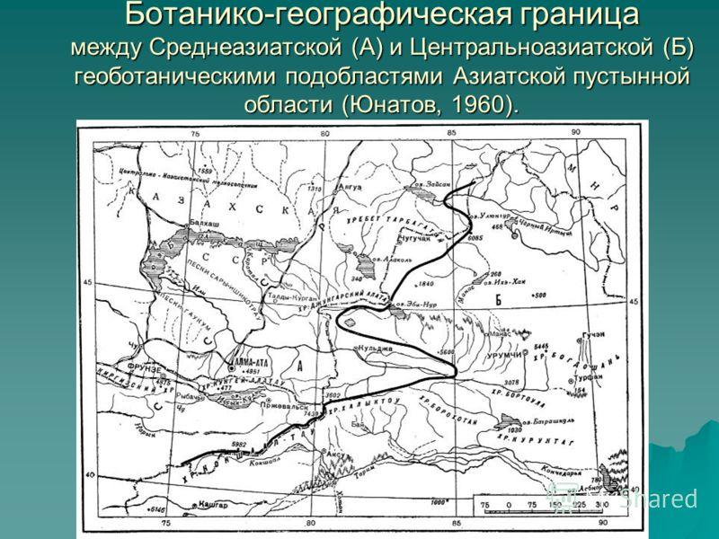 Ботанико-географическая граница между Среднеазиатской (А) и Центральноазиатской (Б) геоботаническими подобластями Азиатской пустынной области (Юнатов, 1960).