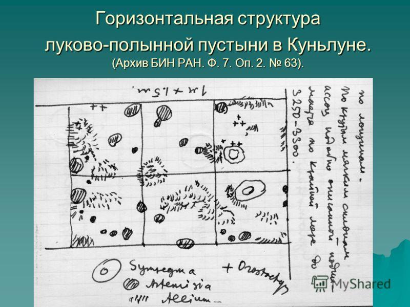Горизонтальная структура луково-полынной пустыни в Куньлуне. (Архив БИН РАН. Ф. 7. Оп. 2. 63).